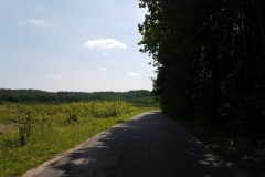 Niebieski szlak rowerowy: Duża pętla mrągowska;Droga doPiecek