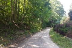 Niebieski szlak rowerowy: Duża pętla mrągowska;Droga doWierzbowa
