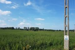 Niebieski szlak rowerowy: Duża pętla mrągowska;okolice Wierzbowa