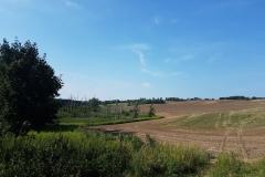 Niebieski szlak rowerowy: Duża pętla mrągowska; na wschód od Mrągowa