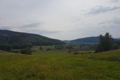 Okolice Bolkowa