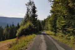 Trasa nr12 prowadząca doźródeł Łaby