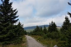 Fragment szlaku pieszego doLabskiej boudy