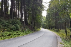 Trasa nr15A prowadząca doSzpindlerowego Młyna