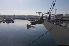 Sopot Marina